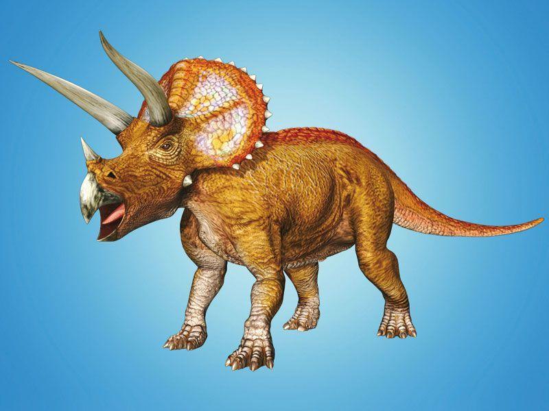 Images dinosaur king dessins anim s mes h ros gulli - Dinosaure dessin anime disney ...