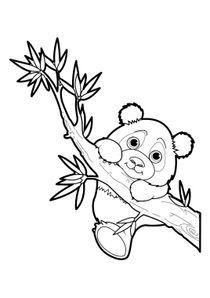 Dessin Panda Kawaii A Imprimer