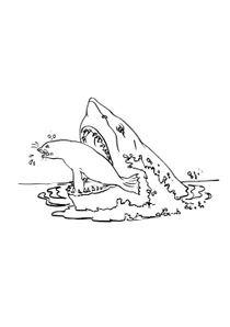 Coloriage Crocodile Mechant.Coloriages Requins A Imprimer Coloriages Animaux