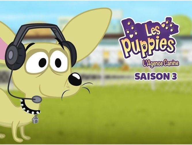Les Puppies l'Agence Canine