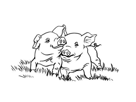 Coloriage Cochon Colorier.Coloriage Cochon 11 Coloriage Cochons Coloriages Animaux