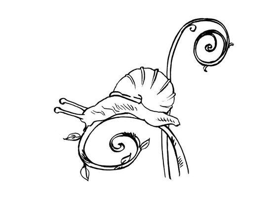 Coloriage Animaux Escargot.Coloriage Escargot 8 Coloriage Escargots Coloriages Animaux