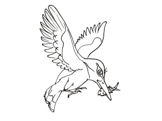 Coloriage Animaux Oiseaux.Coloriage Oiseau 3 Coloriage Oiseaux Coloriages Animaux