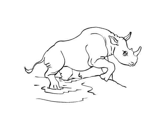 Coloriage En Ligne Rhinoceros.Coloriage Rhinoceros Animaux 8 Rhinoceros Coloriages Kopzxiu