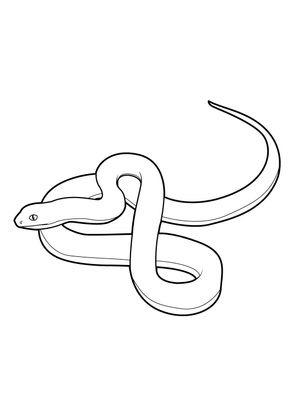 Coloriage Animaux Serpent.Coloriage Serpent 10 Coloriage Serpents Coloriages Animaux