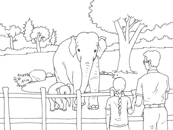 Coloriage Zoo 1 Coloriage Zoo Coloriages Animaux