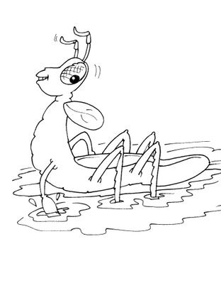 Coloriage insecte 23 coloriage insectes coloriages animaux - Coloriage insecte ...