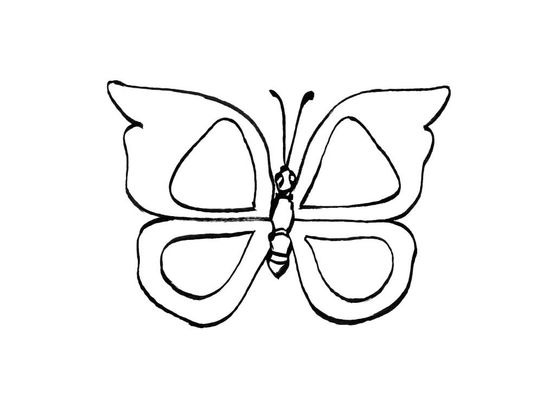 Coloriage papillon 9 coloriage papillons coloriages - Coloriage d un papillon ...