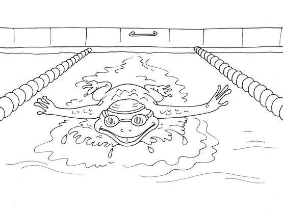 Coloriage natation 16 coloriage natation coloriages sports - Natation dessin ...