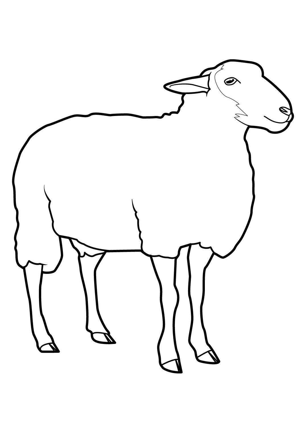 Coloriage Mouton 7 Coloriage Moutons Coloriages Animaux