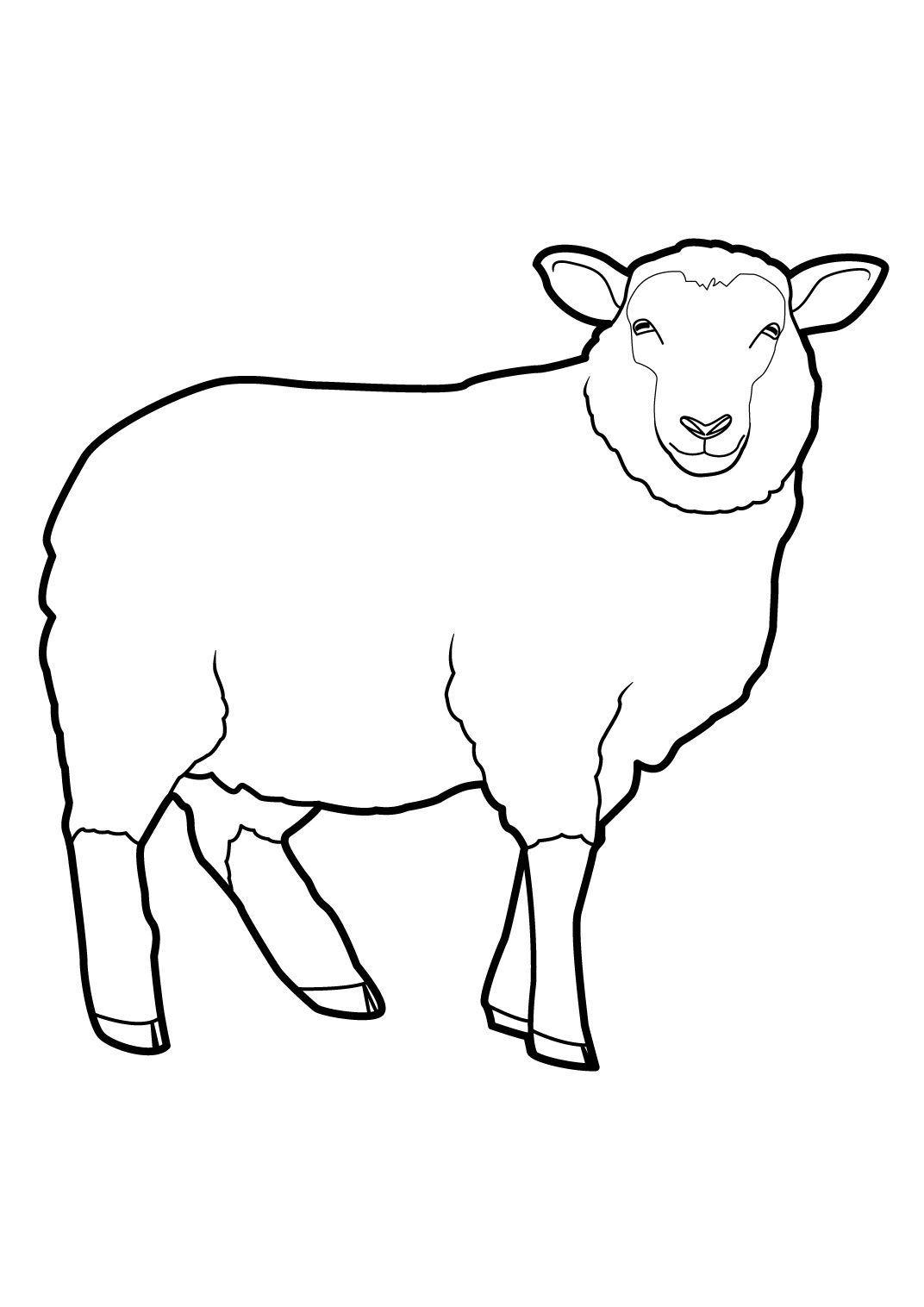 Coloriage Mouton 3 - Coloriage Moutons - Coloriages Animaux
