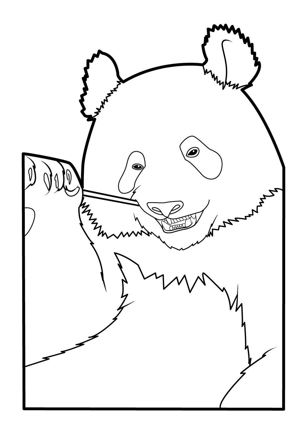 Coloriage Panda 15 - Coloriage Pandas - Coloriages Animaux