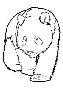 Coloriages Pandas A Imprimer Coloriages Animaux