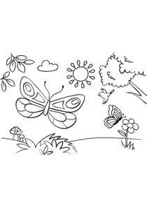 Coloriages Papillons A Imprimer Coloriages Animaux