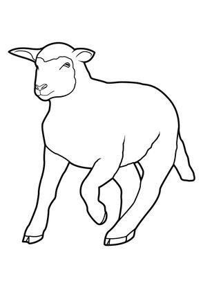 Coloriage Mouton 10 Coloriage Moutons Coloriages Animaux