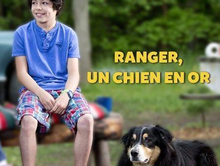 Ranger un chien en or
