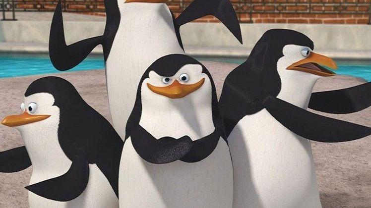 Les Pingouins de Madagascar Terrier hanté
